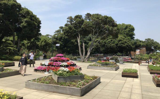 サムエル・コッキング苑の花壇
