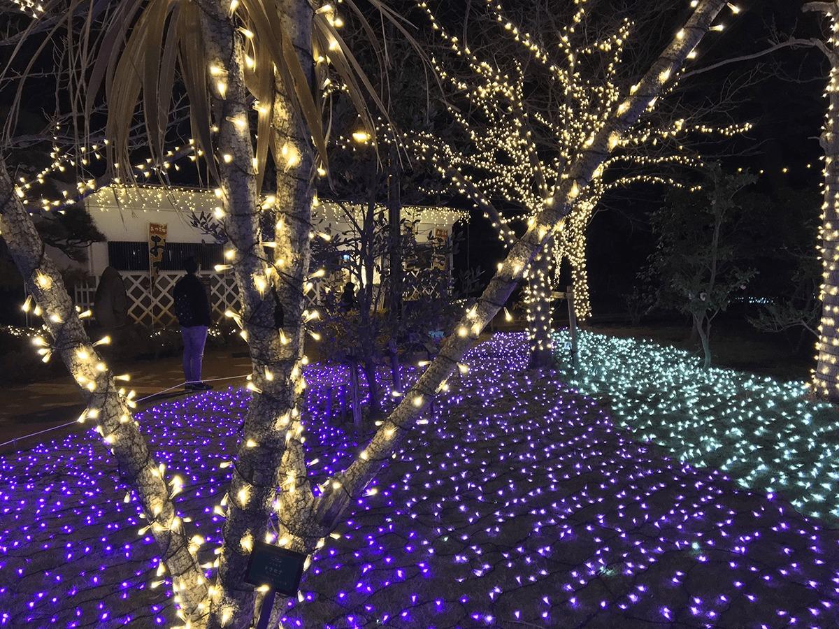 サムエル・コッキング苑の松本館近くのイルミネーション